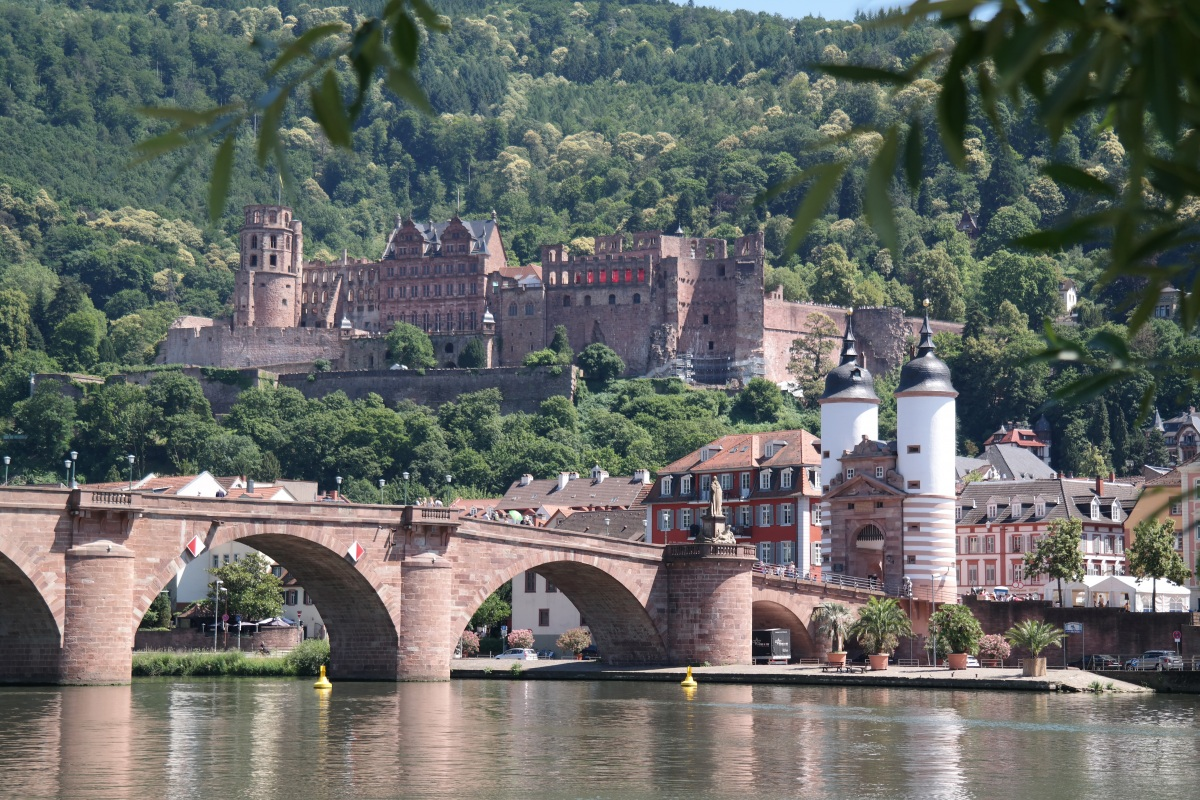 BDVI-Kongress 2020 in Heidelberg